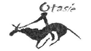 otasie-logo