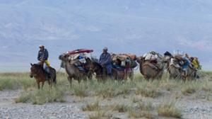 La transhumance nomade en Mongolie