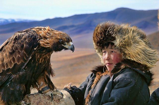 Jeune aiglier et son aigle Royal