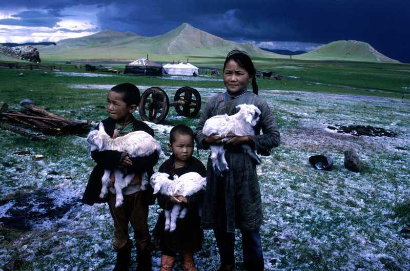 Les enfants dans la steppe infini
