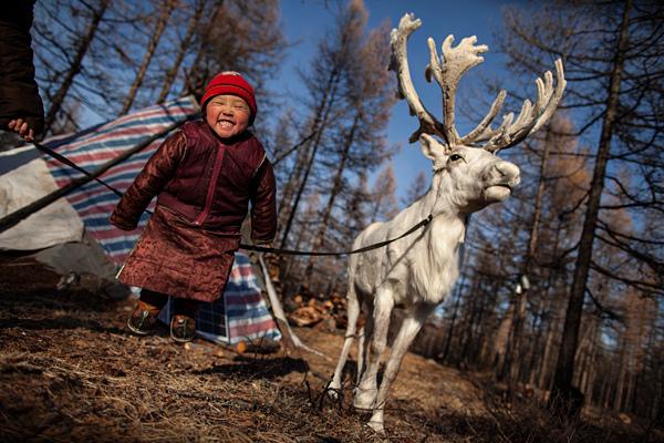 la petite fille et son rene