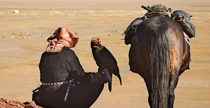 Kazakh aigle cheval