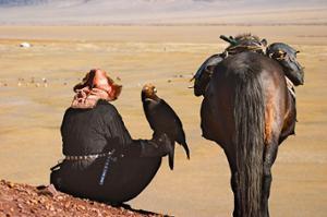 Festival des aigles Altai